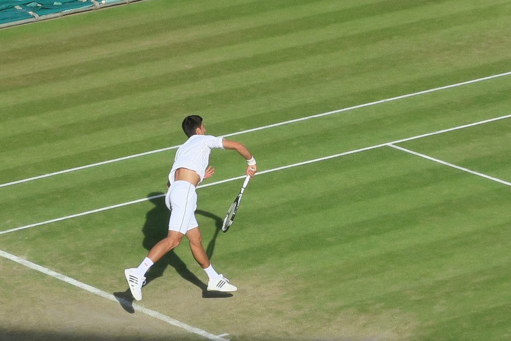 novak-jokovic-1600735_1920.jpg